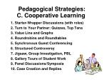 Pedagogical Strategies: C. Cooperative Learning