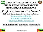 TAPPING THE AGRO-VALUE CHAIN: LESSONS FROM RECENT MOZAMBIQUE EXPERIENCE