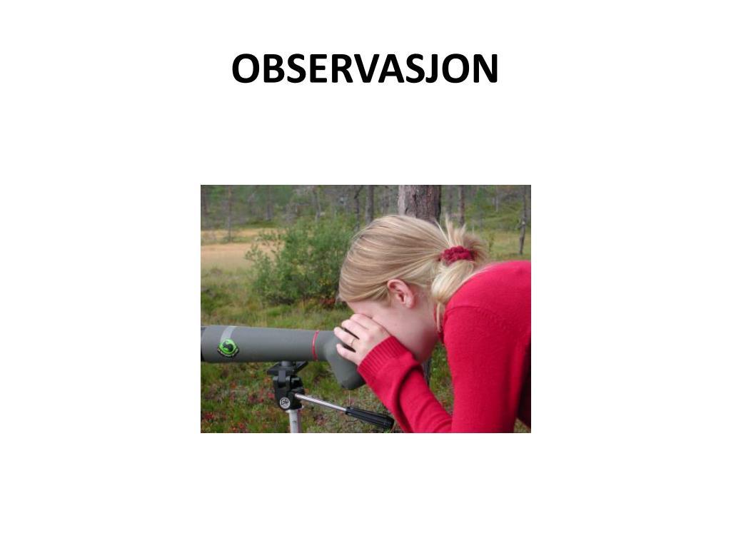 observasjon l.