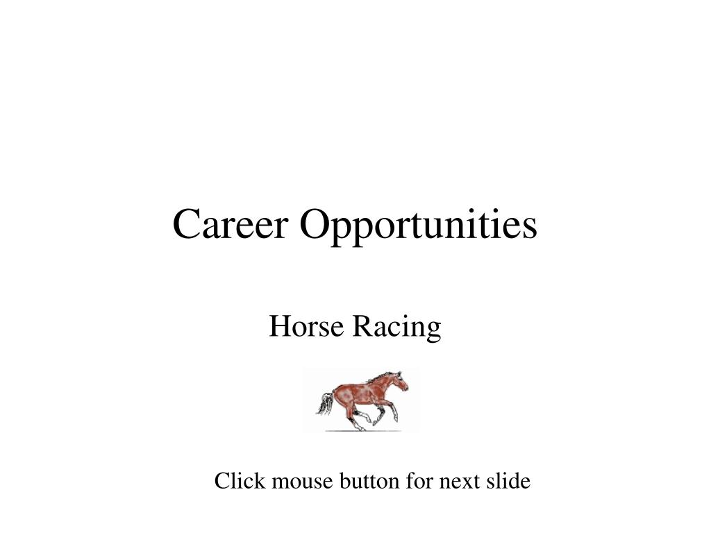 career opportunities l.
