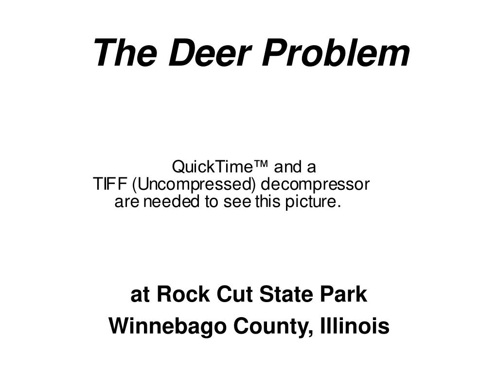 the deer problem l.