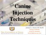Canine Injection Techniques