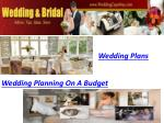 Wedding Plans,
