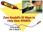 Jane Goodall's 10 Ways to Help Save Wildlife