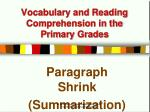 Vocabulary and Reading Comprehension in the Primary Grades