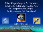 After Copenhagen & Cancun: What is the Politically Feasible Path to Comprehensive Targets for Greenhouse Gas Emissio