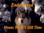 Endangered Means There's Still Time