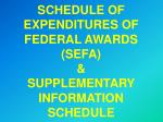 SCHEDULE OF EXPENDITURES OF FEDERAL AWARDS (SEFA) & SUPPLEMENTARY INFORMATION SCHEDULE