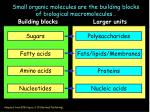 Small organic molecules are the building blocks of biological macromolecules …