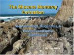 The Miocene Monterey Formation