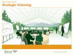 What is Strategic Visioning?