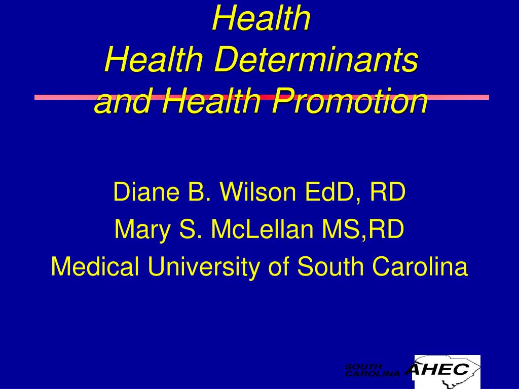health health determinants and health promotion l.