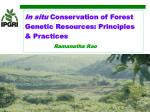 In situ  Conservation of Forest Genetic Resources: Principles & Practices Ramanatha Rao