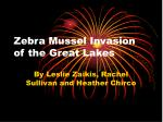 Zebra Mussel Invasion of the Great Lakes