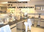 ORGANIZATION   of a CRIME  LABORATORY