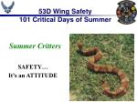 53D Wing Safety 101 Critical Days of Summer