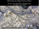 Which Clays are Really Present on Mars? or Are you sure about those squiggly lines? Ralph Milliken (JPL/Caltech)