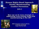 Human Rights Based Approach Gender Mainstreaming Conflict Prevention (etc.)