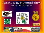 Bexar County Jr Livestock Show Auction of Champions