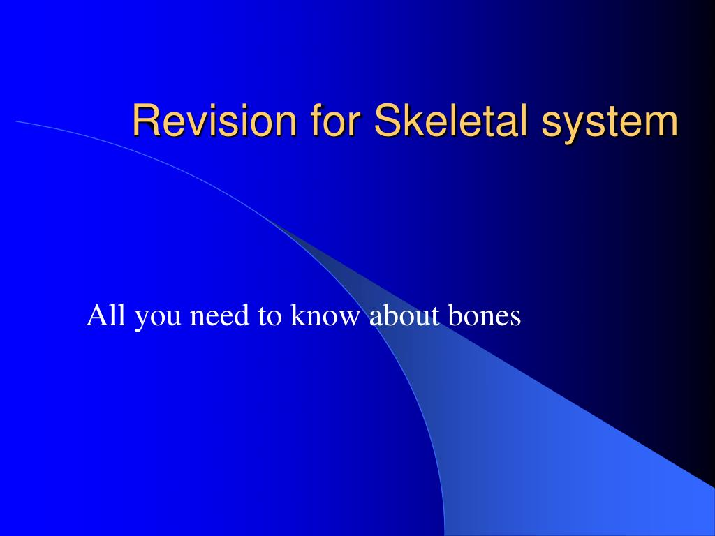 revision for skeletal system l.