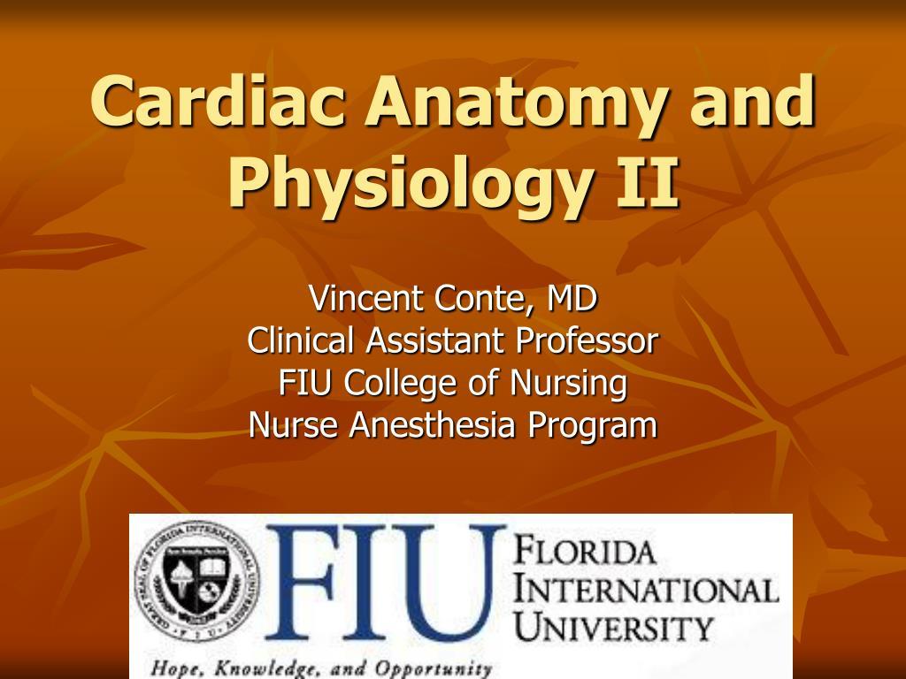 PPT - Cardiac Anatomy and Physiology II PowerPoint Presentation - ID