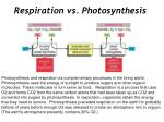 Respiration vs. Photosynthesis