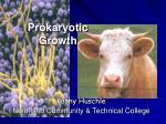 Prokaryotic Growth