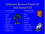 Difference Between Plant Cell And Animal Cell