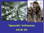 'Spanish' Influenza 1918-20