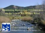 Monitoring Restoration Effectiveness on the Lower Rio Blanco River