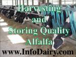 Harvesting and Storing Quality Alfalfa