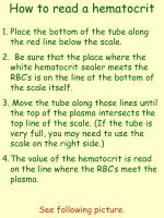 How to read a hematocrit