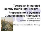 Toward an Integrated Identity Matrix (IIM) Theory – Proposals for a Dynamic Cultural Identity Framework