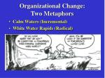 Organizational Change: Two Metaphors