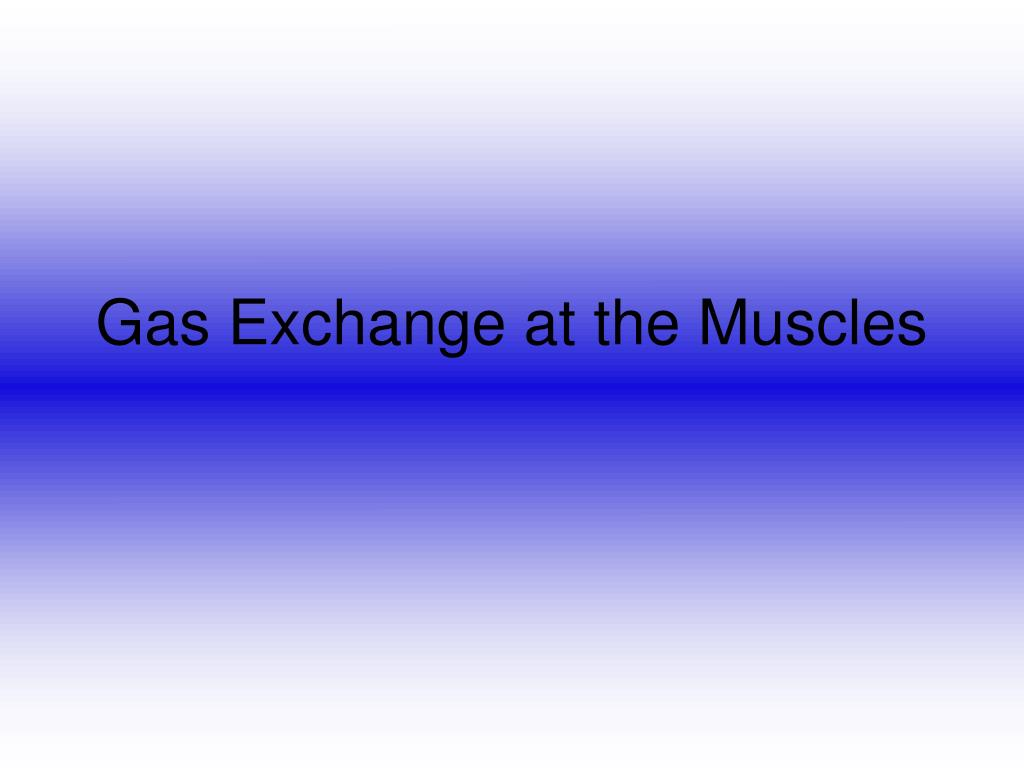 gas exchange at the muscles l.
