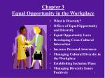 Chapter 3 Equal Opportunity in the Workplace