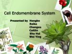 Cell Endomembrane System
