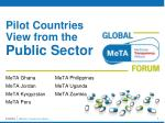Pilot Countries View from the  Public Sector