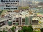 Human Factors in Construction Safety – Management Issues