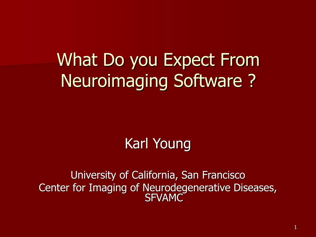 PPT - What Do you Expect From Neuroimaging Software