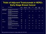 Trials of Adjuvant Trastuzumab in HER2+ Early-Stage Breast Cancer