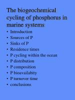 The biogeochemical cycling of phosphorus in marine systems