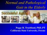 Normal and Pathological Gait in the Elderly