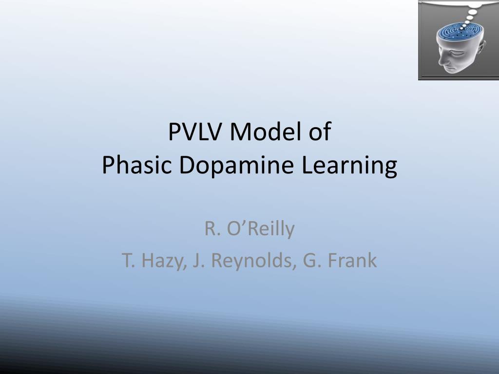 pvlv model of phasic dopamine learning l.