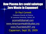 How Plasma Arc could sabotage Zero Waste in Capannori