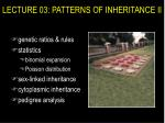 LECTURE 03: PATTERNS OF INHERITANCE II