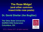 Dr. David Shetlar (the BugDoc) The Ohio State University OARDC/OSU Extension Columbus, OH