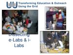 Dissecting e-Labs & i-Labs
