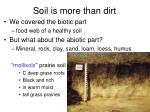 Soil is more than dirt