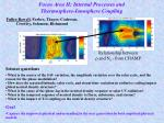 Focus Area II: Internal Processes and  Thermosphere-Ionosphere Coupling